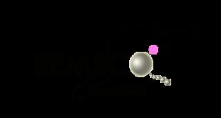 Logo Remsco Creations